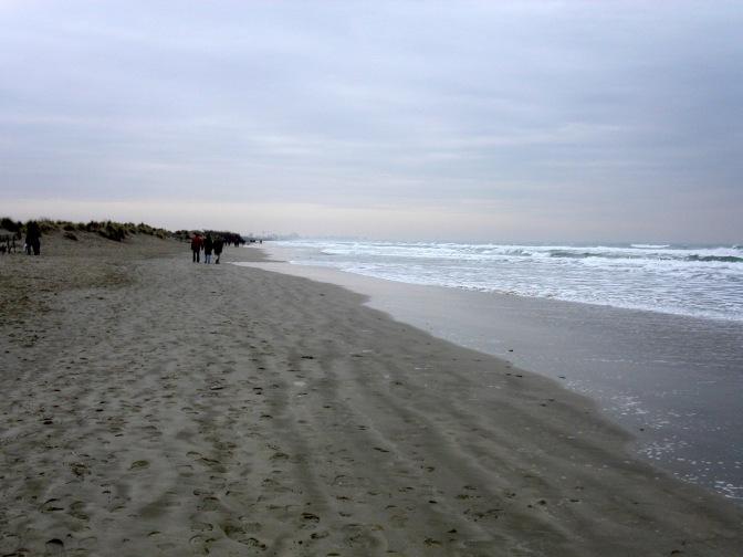 Sauvons l'accès libre et gratuit à notre littoral !