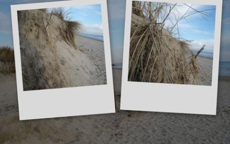 080125-dunes