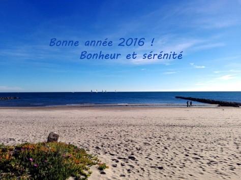 2016-BonneAnnée2