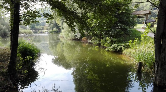 Découverte du lac de saint clair