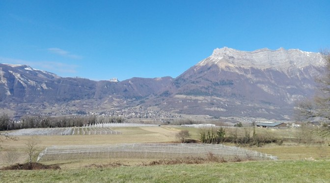 Dernière balade au dessus des vergers de Châteauneuf avant de rentrer #Savoie
